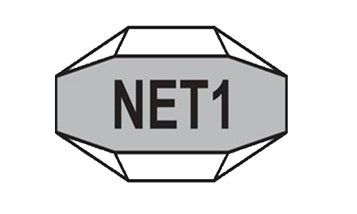 Net 1 UEPS Technologies Inc.
